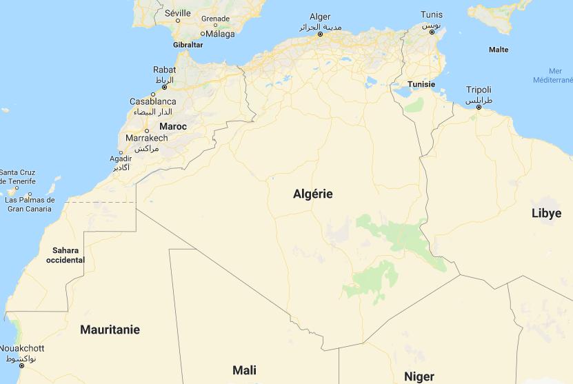 AFRIQUE: l'Algérie, 3e pays africain débarrassé du paludisme