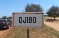 DJIBO : des engins explosifs découverts lors du ravitaillement de la ville en carburant