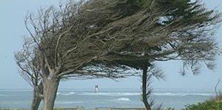 Un vent fort sur la côte du Sénégal