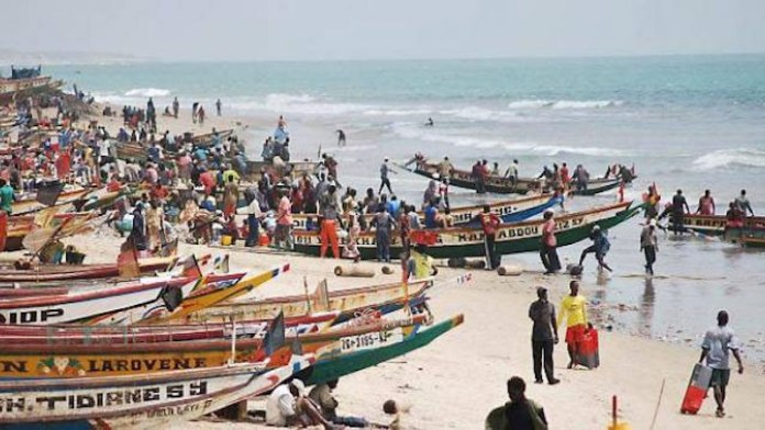 La modernisation du quai de débarquement de Mboro sur mer