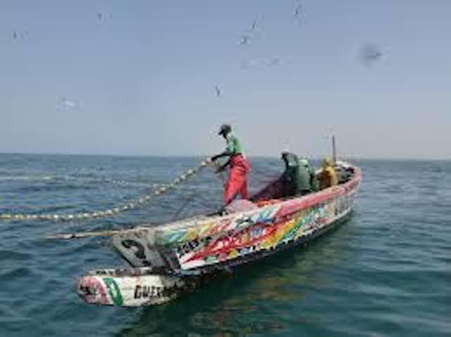 Les pêcheurs géolocalisables