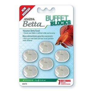 Buffet Blocks bettas