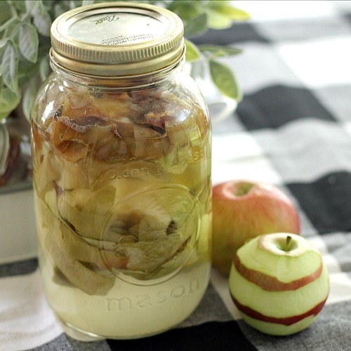 Reduce Food Waste: 10 Ways to Use Apple Peels- The next time you have extra apple peels left over, don't throw them away! Instead, put them to use with these super smart ways to use apple peels! | apple skins, ways to use apples, use all of an apple, reduce food waste, frugal living, #frugal #apples #ACultivatedNest