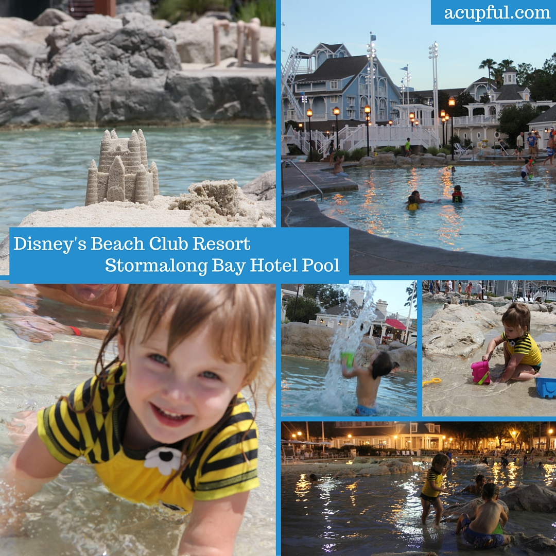 Disney's Beach Club Resort pool