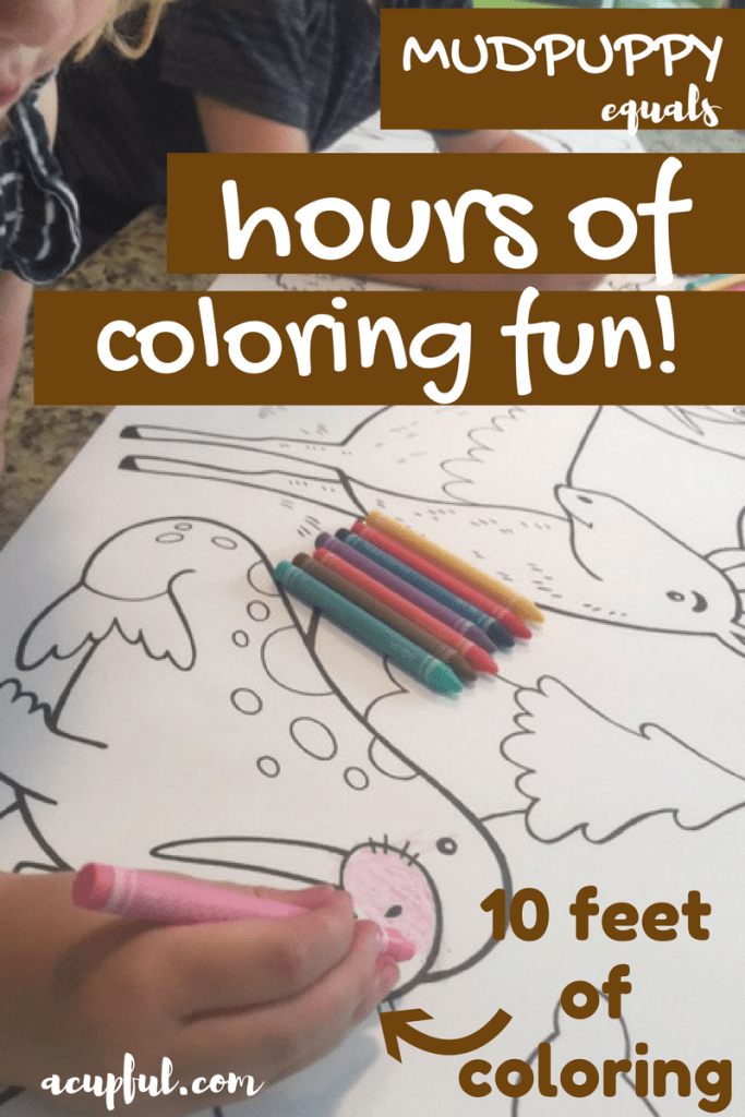 Mudpuppy coloring and craft products