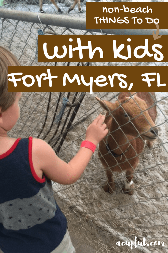 THings to do in Fort Myers with children - a cupful of carters - mandy carter