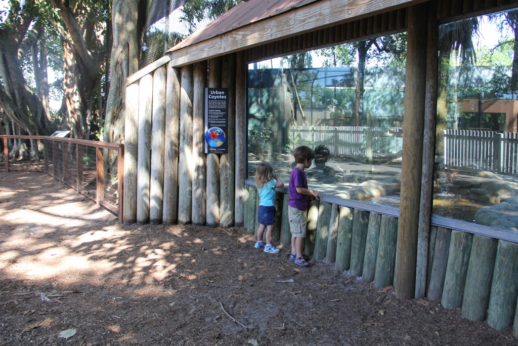 naples zoo | things to do in Southwest Florida