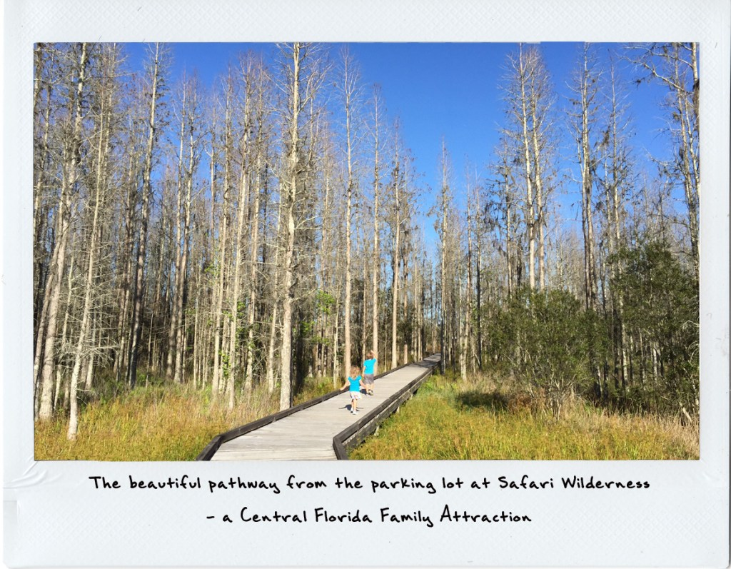 Central Florida Family attractions | 3 day vacation in central florida | acupful.com | A Cupful of Carters | central florida | Safari wilderness | things to do with kids in central florida
