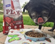 Every family member desrves delicious and nutritious food. Introducing the new Nutrish PEAK Recipe to our dog inspired this Lamb meatball recipe for the family | Rachel Ray's Nutrish PEAK Open Range Recipe | #MyNutrishPeak | dog food | lamb recipes