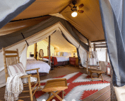Reasons to go glamping at Westgate River Ranch Resort in Central Florida | things to do in central florida | A Cupful of Carters | acupful.com | visit central florida | florida vacation | glamping with kids | florida campgrounds | | glamping locations | florida attractions