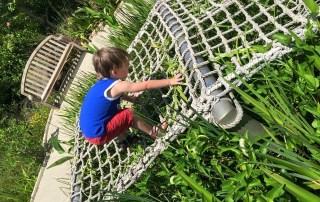 Florida Botanical Gardens | Tips for taking kids to Botanical Gardens | Florida Family Travel | Travel blog| Mandy Carter travel writer | Acupful.com | Florida travel
