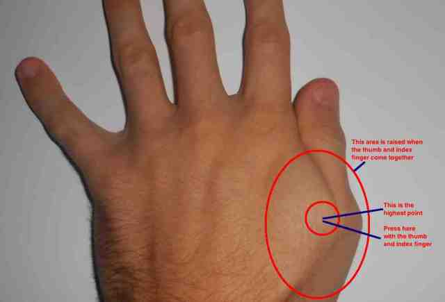 Between Index Finger and Thumb