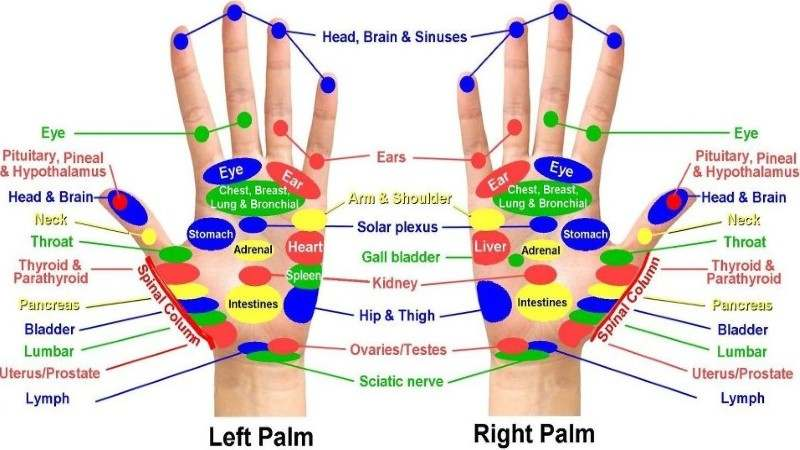 Acupressure points chart for relieving pain acupressure points