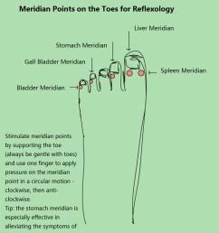 foot reflexology toes chart [ 1092 x 1336 Pixel ]