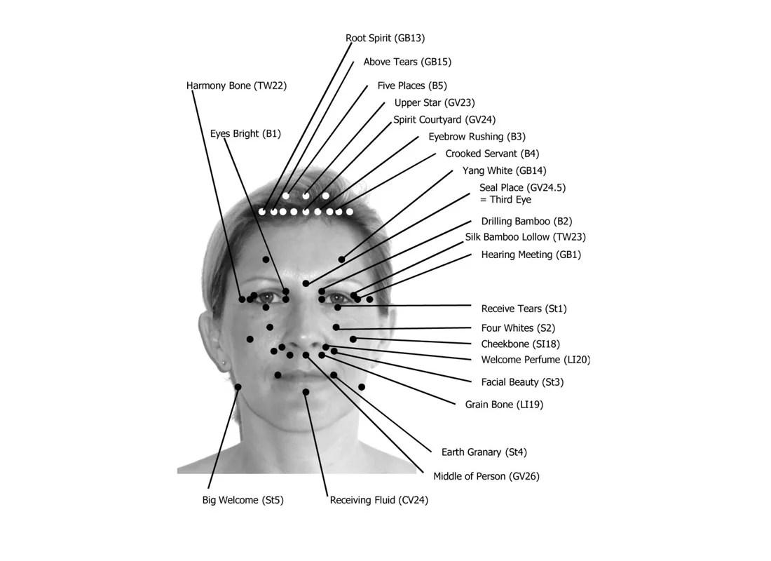 face pressure points diagram taco valve wiring reflexology massage school