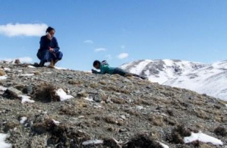 mongolia(blog))10