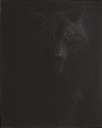 Black Wolf- Renso Tamse