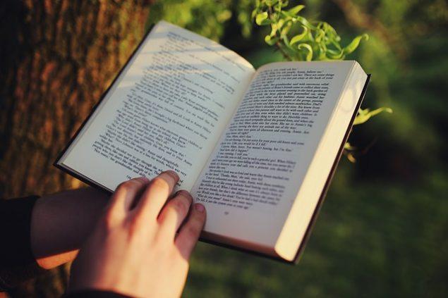 木の側で右手を使って英字本をめくる瞬間