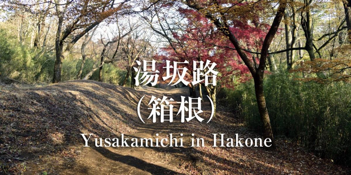 【箱根】SEASON-2:紅葉落ちる湯坂路を下る