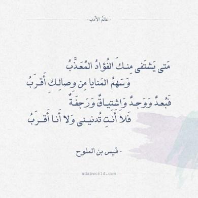 شعر قيس بن الملوح - متى يشتفي منك الفؤاد المعذب
