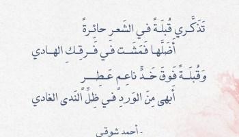 شعر أحمد شوقي - تذكري قبلة