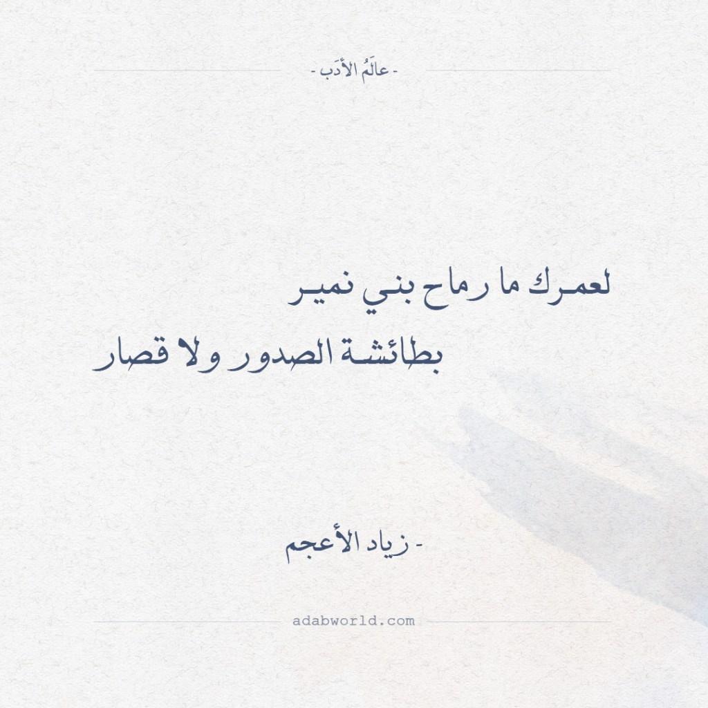 زياد الأعجم - لعمرك ما رماح بني نمير