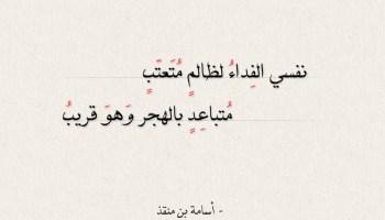 شعر أسامة بن منقذ - نفسي الفداء لظالم متعتب