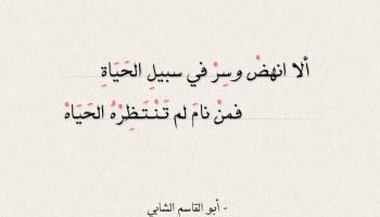 ألا انهض وسر في سبيل الحياة - أبو القاسم الشابي