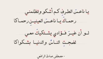 يا ناعس الطرف ابيات جميلة لمصطفى صادق الرافعي