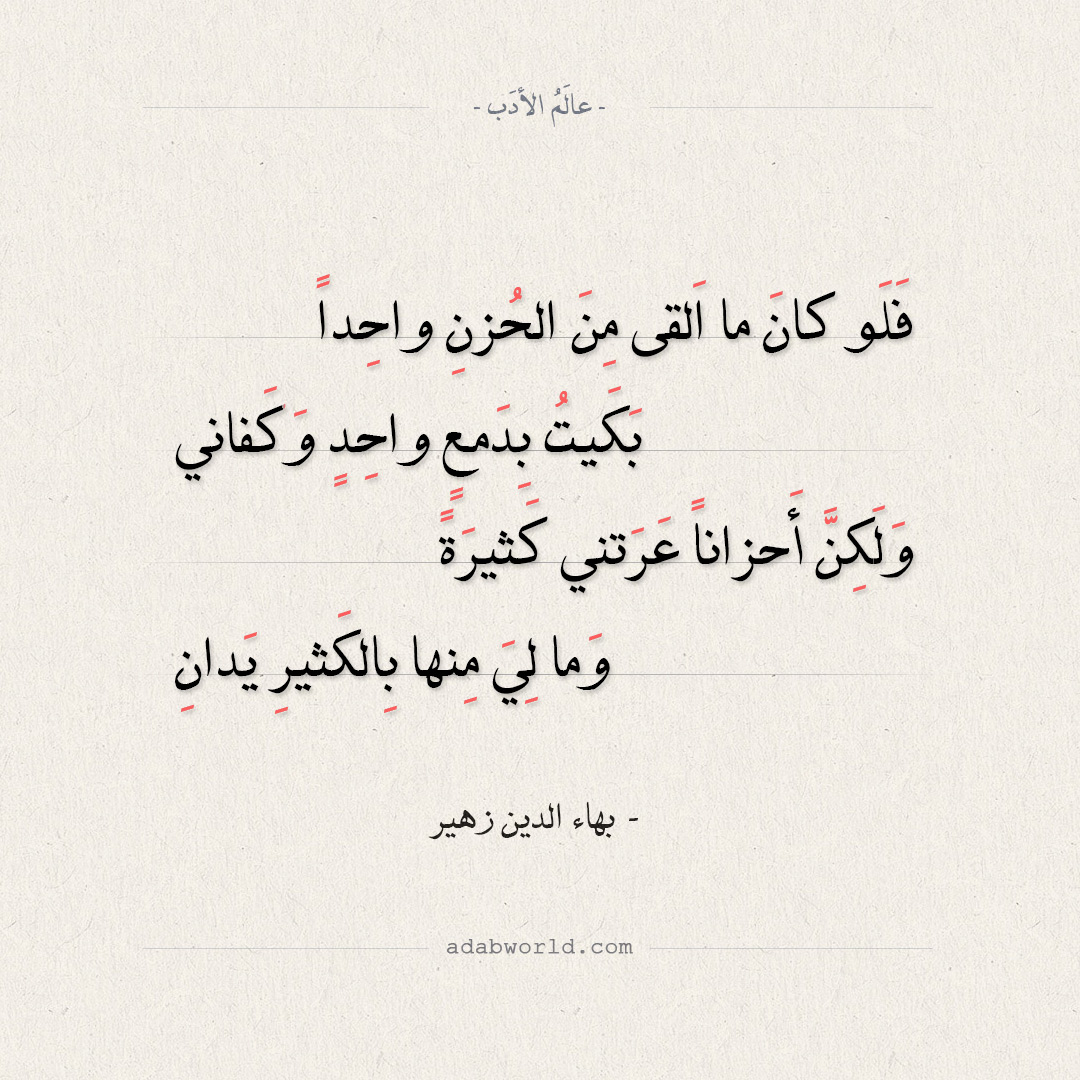 شعر بهاء الدين زهير - فلو كان ما القى من الحزن