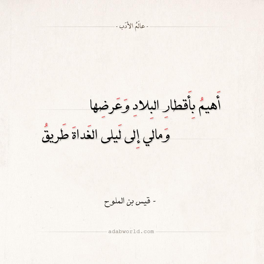 شعر قيس بن الملوح - أهيم بأقطار البلاد وعرضها