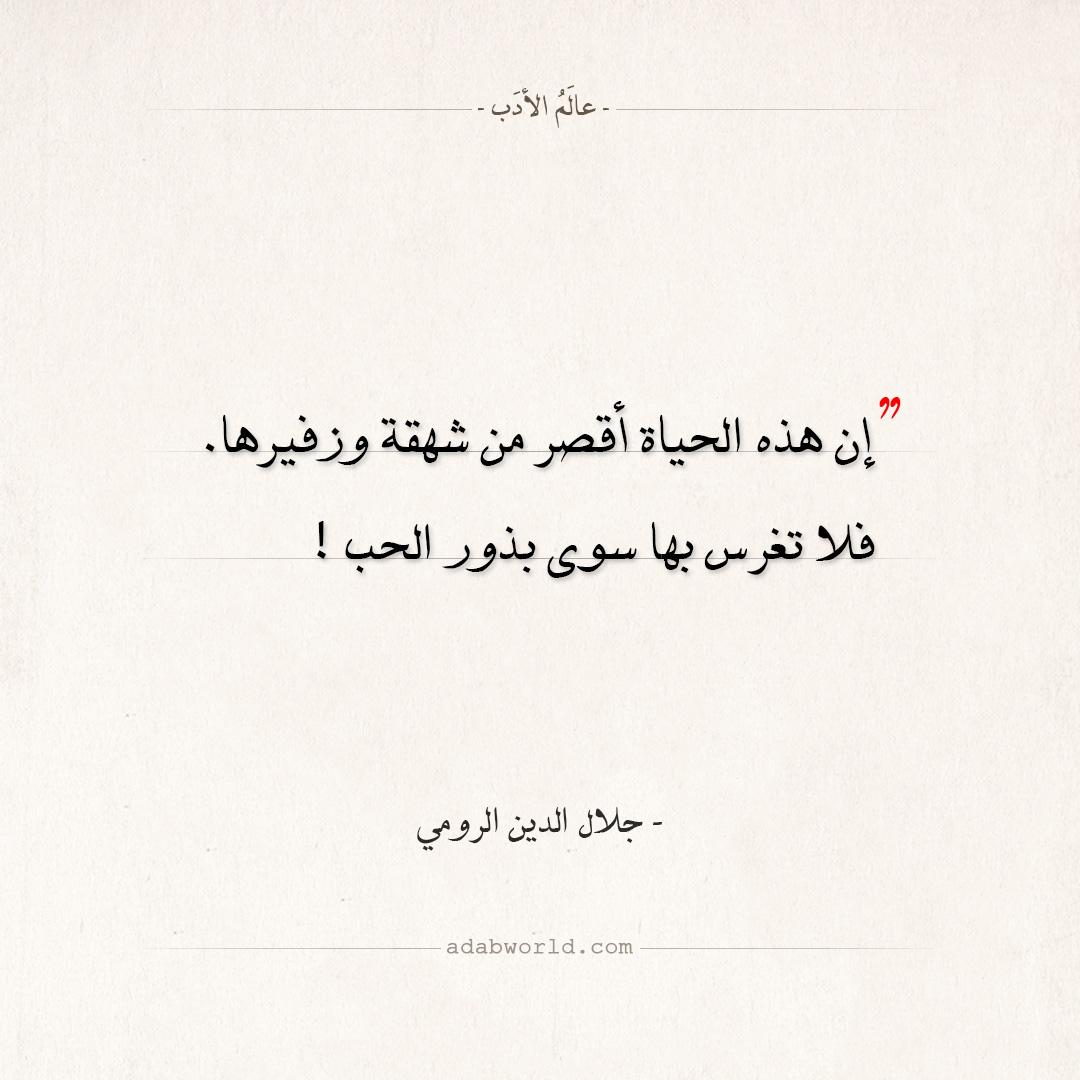 اقتباسات جلال الدين الرومي - بذور الحب
