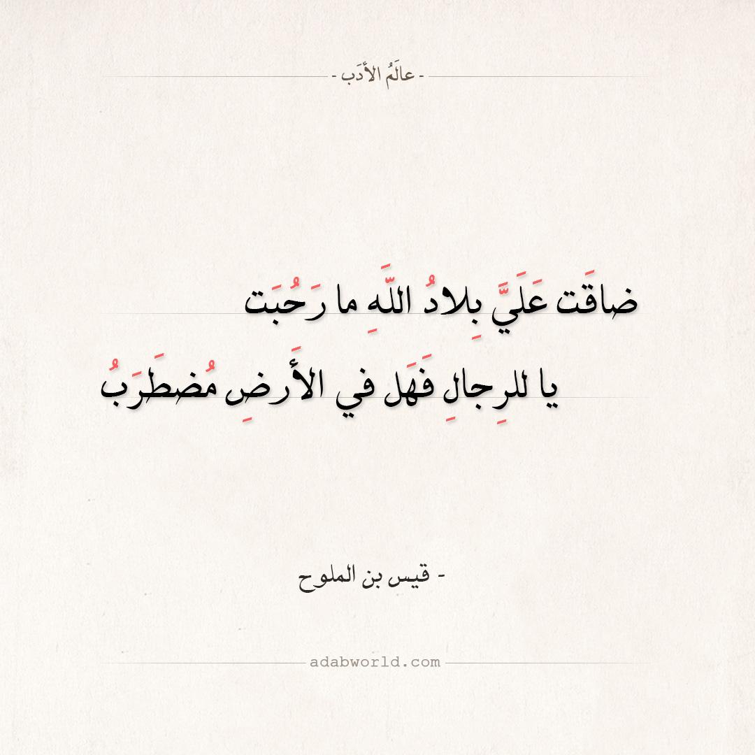شعر قيس بن الملوح - ضاقت علي بلاد الله ما رحبت