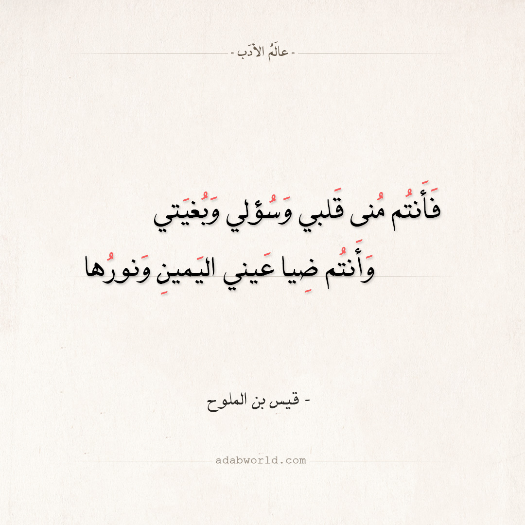 شعر قيس بن الملوح - فأنتم منى قلبي وسؤلي وبغيتي