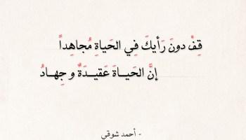 شعر أحمد شوقي - قف دون رأيك في الحياة مجاهدا