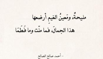 شعر أحمد صالح الصالح - مليحة ومعين الغيم أرضعها