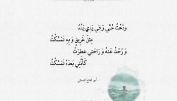 شعر أبو الفتح البستي - ودعت حبي وفي يدي يده