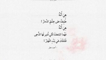 شعر أحمد مطر - هي أمة