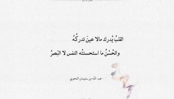 شعر عبد الله النحوي - القلب يدرك مالا عين تدركه