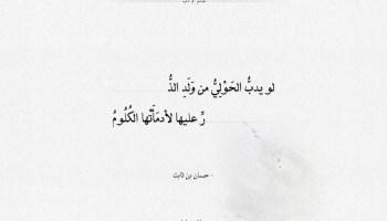 شعر حسان بن ثابت - لو يدب الحولي من ولد الذر