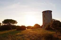 Rund und erneuert: Der Torre Rivolta liegt mitten im Naturreservat Parco Regionale della Maremma bei Talamone.