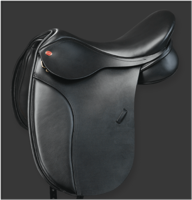 selle dressage saddle fitter