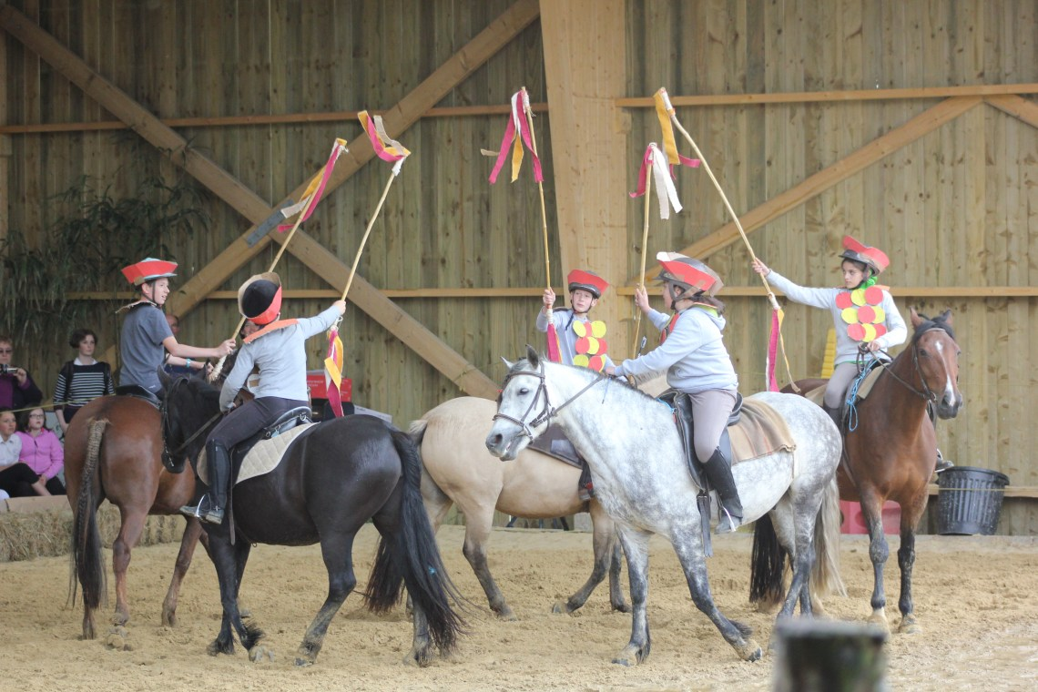 spectacle equestre groupe
