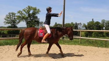 exercices mise en selle