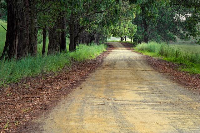 Evaluer la vitesse de son cheval en comptant le nombre de foulées le long d'une petite route