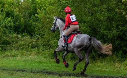 comment réagir face à un cheval chaud en promenade ?