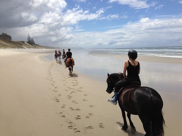 Chevaux en promenade sur la plage