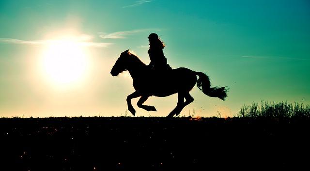 ombre d'un cheval en promenade au galop