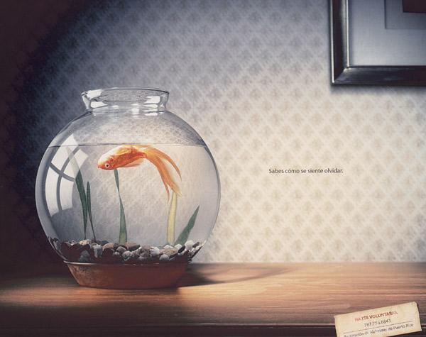https://i0.wp.com/adage.com/images/random/1007/hisp07_magsilver_fish_big.jpg