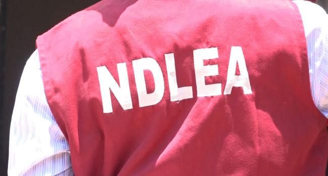 145 Suspected Drug Traffickers Arrested By NDLEA In Edo